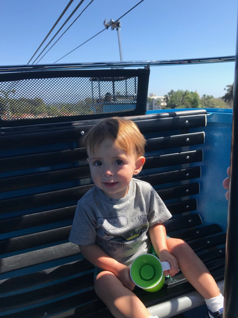toddler boy on gondola ride at the San Diego Zoo with a green sippy cup